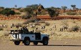 Auf Pirschfahrt in der Kalahari