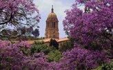 Pretoria zur Jakaranda-Blüte